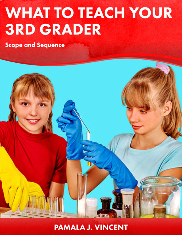 What to Teach Your 3rd Grader